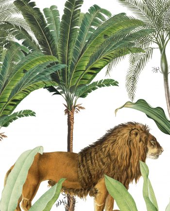 Duurzame kaart king of the jungle