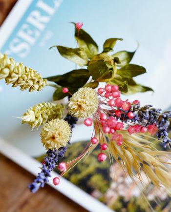 Mooiste droogbloemen