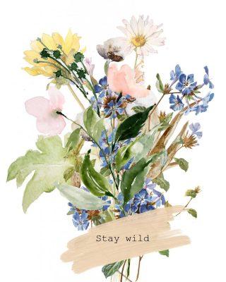 STAY WILD 💛 Nieuwe collectie! Deze mooie illustraties van wilde bloemen worden geprint op onze duurzame kaarten. Voor iedereen die het nog niet wist.. bloemen zijn mijn favoriet!! Je vindt daarom niet alleen droogbloemen en bloemzaadjes voor wilde bloemen terug in de webshop maar ook illustraties van bloemen op kaartjes geprint 💛 Benieuwd? Bekijk alle kaartjes via de shop ⭐ Voor retailers: @orderchamp . . . . . . . . #mookstories#sustainableliving#wooninspiratie#stayandwander#interieur#fasionaddict#ecoblogger#droogbloemenboeket#droogbloemen#gedroogdebloemen#duurzaamcadeau#liefleven#lieverdanlief#binnenkijken#duurzaamwonen#stoerwonen#storytelling#eerlijkshoppen#eerlijkehandel#dutchdesign#happyliving#handcraft#driedflowers#driedflowerbouquet#fair#bloemengroothandel#bloemen#mamblog#sheisthewild